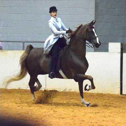 sports Bobbie McDonald and horse 2018