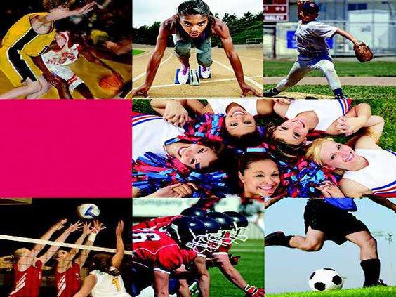 all sports