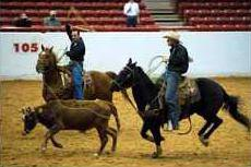 1226 Military rodeo
