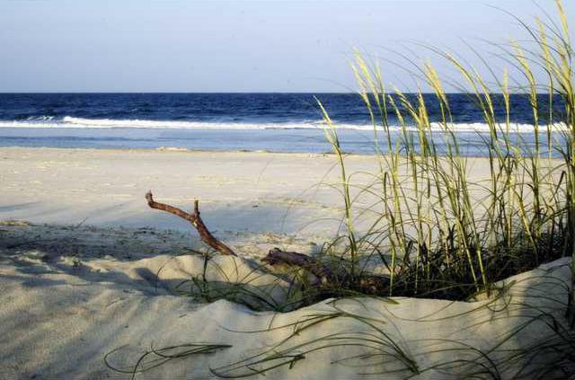 beach on Tybee Island