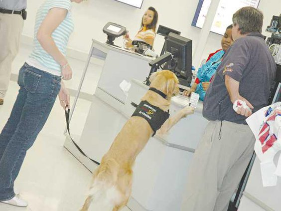 0627-paws4vets-2
