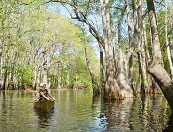 Ebenezer canoe