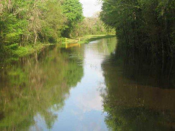 Holmestown Road canal 006