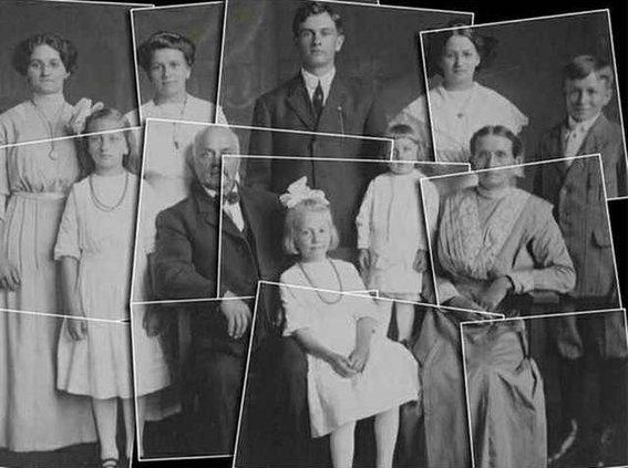 genealogy illustration