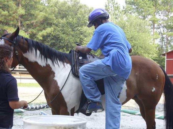 horses-heroes1