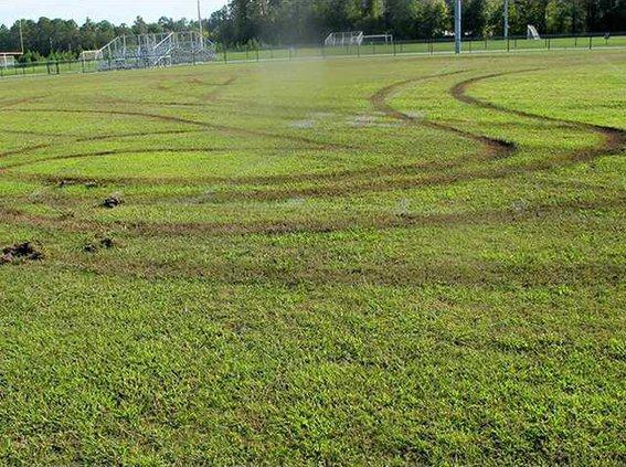 long field vandals