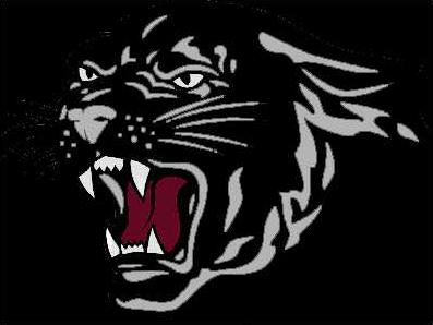 panther pic