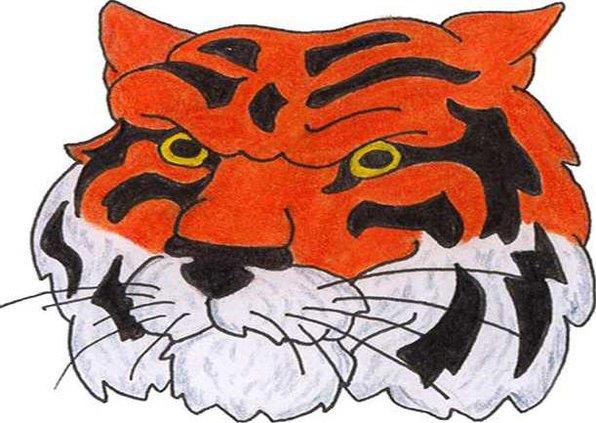 BI tiger