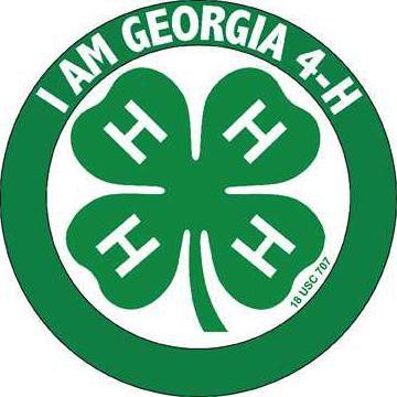 I am Georgia 4-H