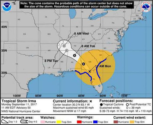 Irma 7