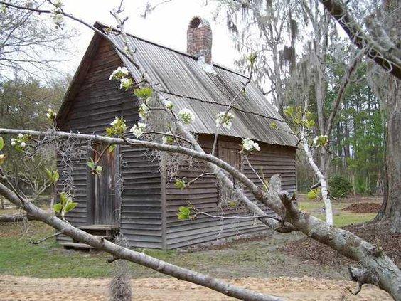 cabin w pear blossum