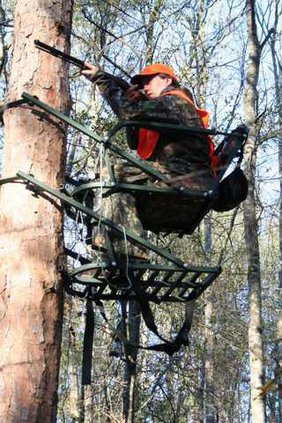e-mail-hilary-mizelle-in-tree-stand-2