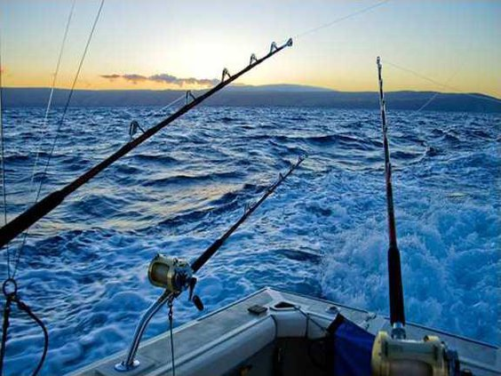 new-and-used-saltwater-fishing-rods-los-angeles-california-578x434