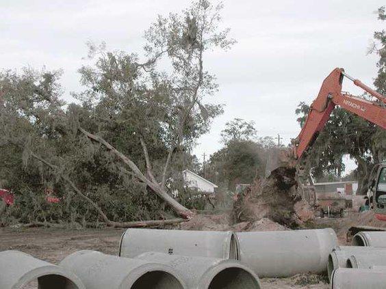 trees-bulldozed-007