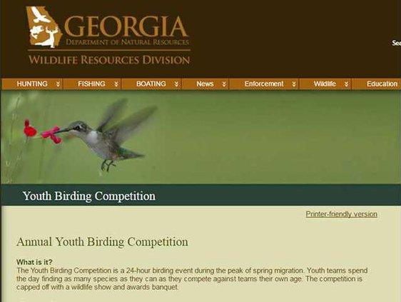 youth birders