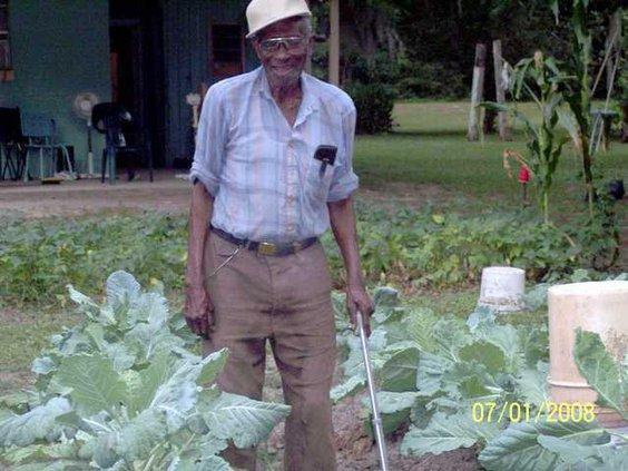 Beautiful garden doctor0714