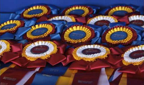 HorseShowRibbond
