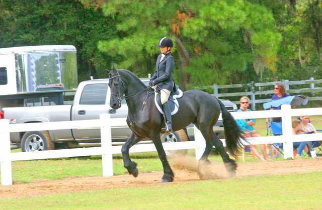 Katy Maier Bluff Creek Stables Riding Jasper