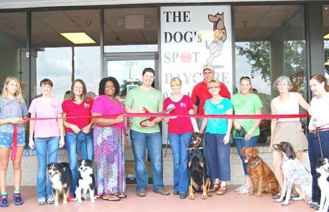 The Dogs Spot Daycare Ribbon Cutting 28