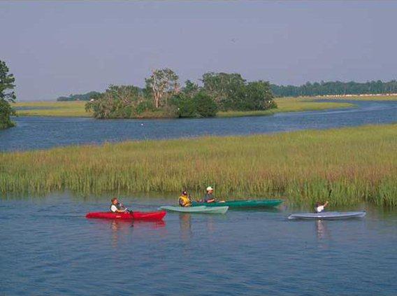 Kayak Picture