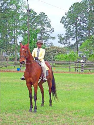 Nicole Lloyd 1st place winner riding Storm on the Rise