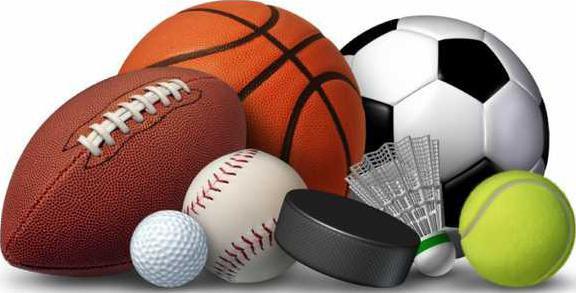 sports equipment-745x396