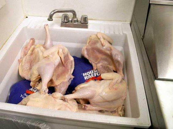 turkey sink