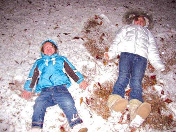 Wards snow 4