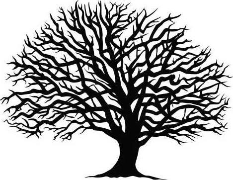 live oak art