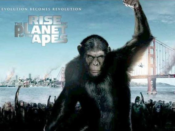 rise of apes