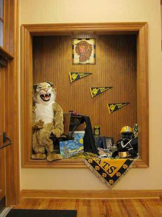 Wildcats 3875