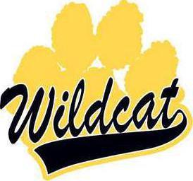 Wildcat clip art