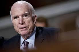 McCain web.jpg