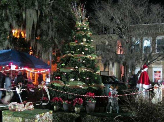 Christmas tree and Spanish moss