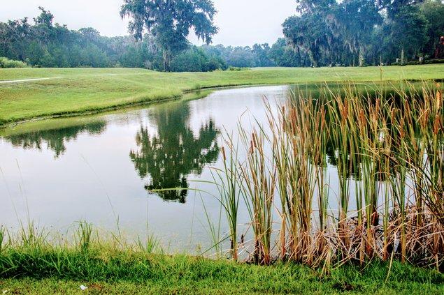 sapelo golf 1