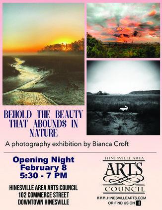 art exhibit - Bianca Croft