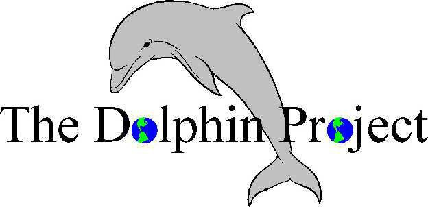 dolphin project