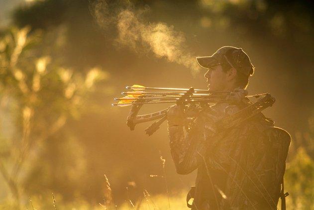 Deer archery