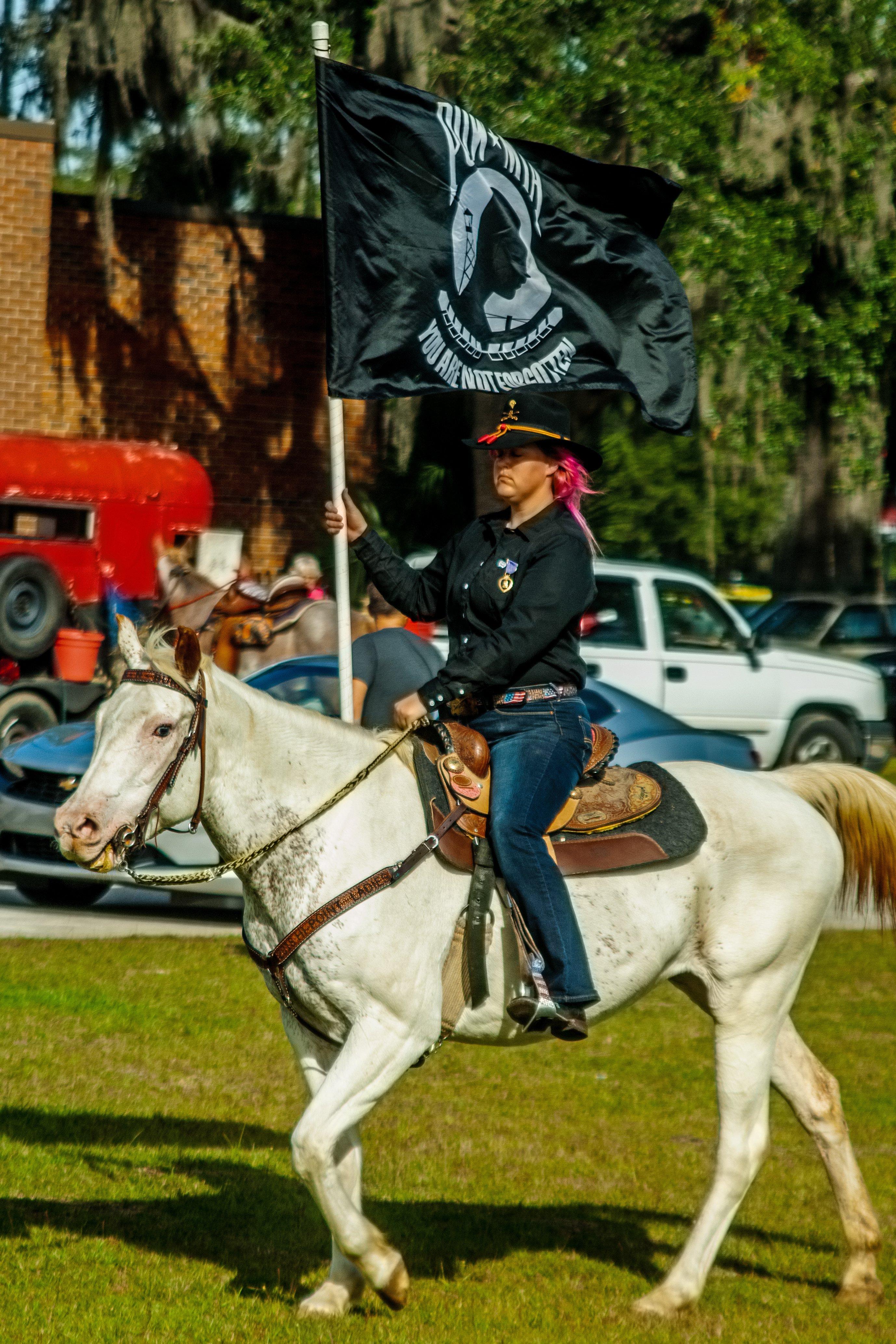 horse parade 2