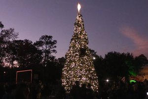 Fort Stewart Christmas tree lighting